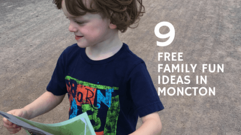 free things moncton kids family fun ideas pickle planet riverview Dieppe new Brunswick what to do