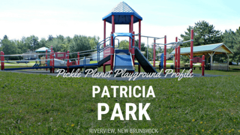 riverview patricia park tot lot accessible playground pickle planet