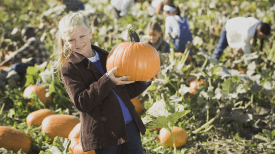 thanksgiving Moncton family weekend kids activities events