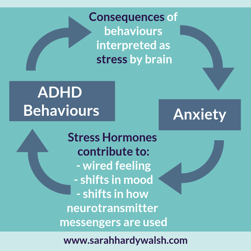 diagram ADHD Anxiety Cycle children symptoms behaviours help sarah hardy walsh