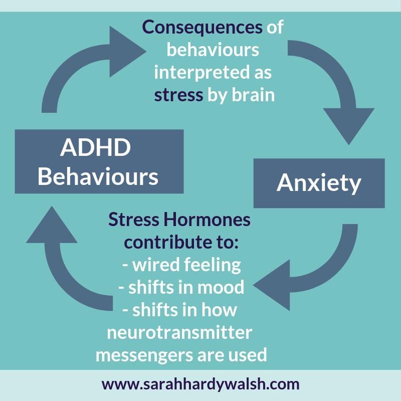 683f942386ed diagram ADHD Anxiety Cycle children symptoms behaviours help sarah hardy  walsh