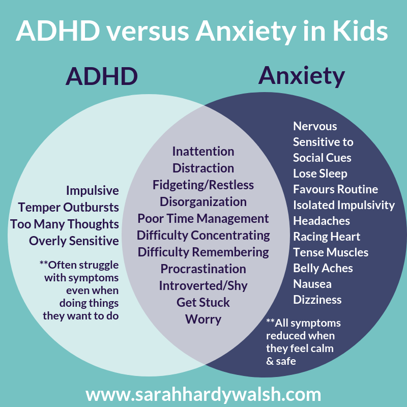 ADHD and Anxiety in Kids • Pickle Planet Moncton