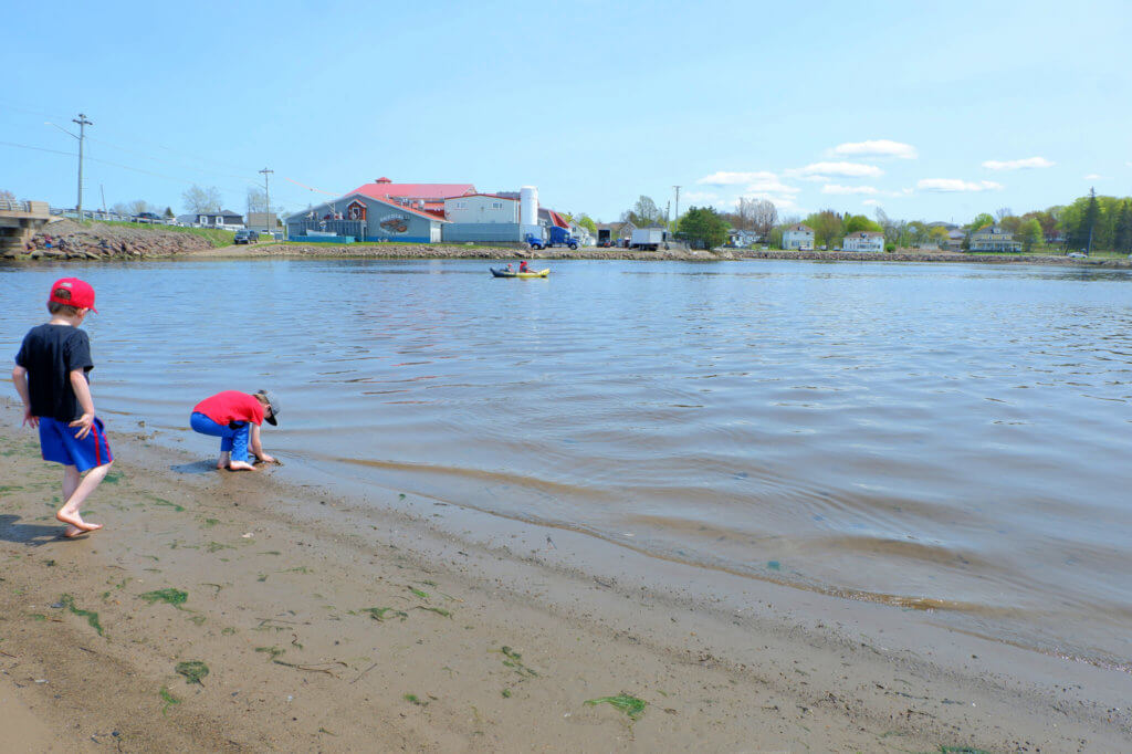 shediac playground daytrip pickle planet parlee beach things to do with kids moncton dieppe riverview summer adventures kayak