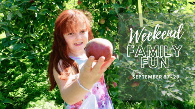 Weekend family fun activities events moncton riverview dieppe pickle planet new brunswick