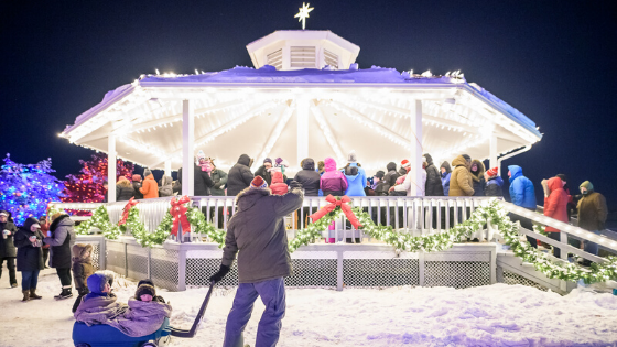 riverview light up pickle planet weekend round up november